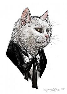1º Doutor_Gato