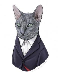 12º Doutor_Gato