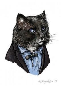 2º Doutor_Gato