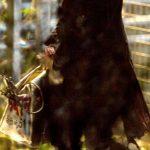 Jodie Whittaker Doctor Who Brasil Bastidores 04